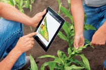 Workers access John Deere Mobile Farm Manager data about their field on a tablet device