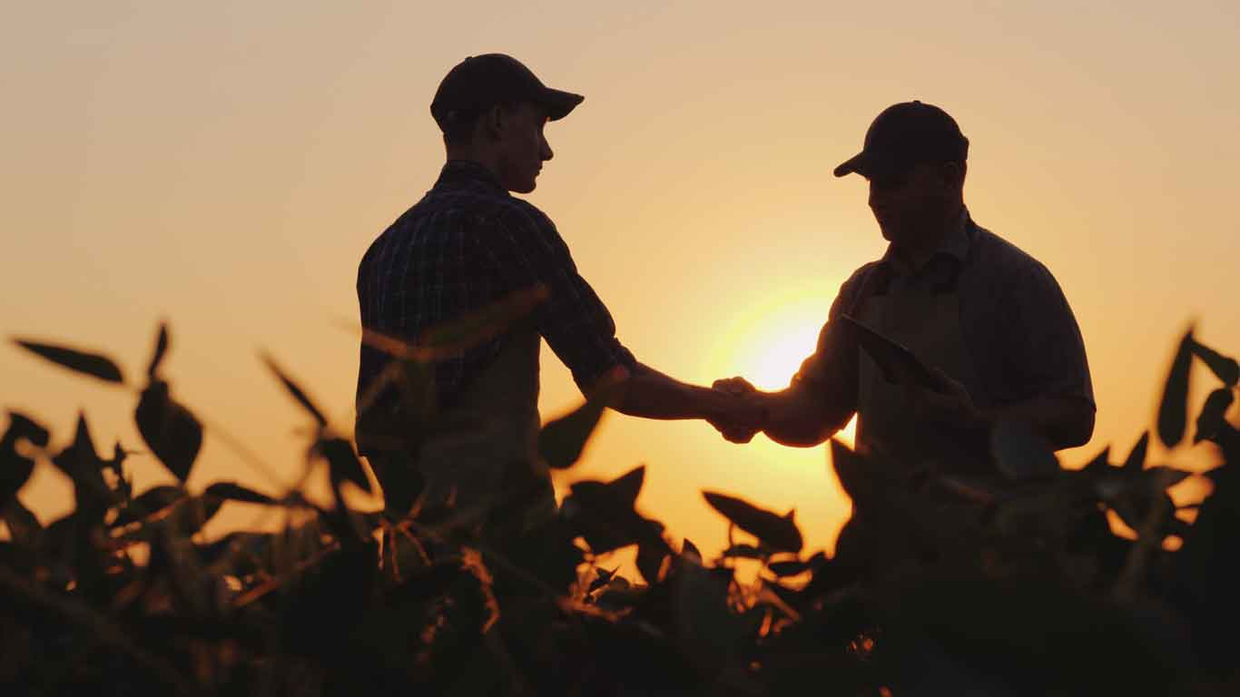 Two men shaking hands in a corn field during dawn