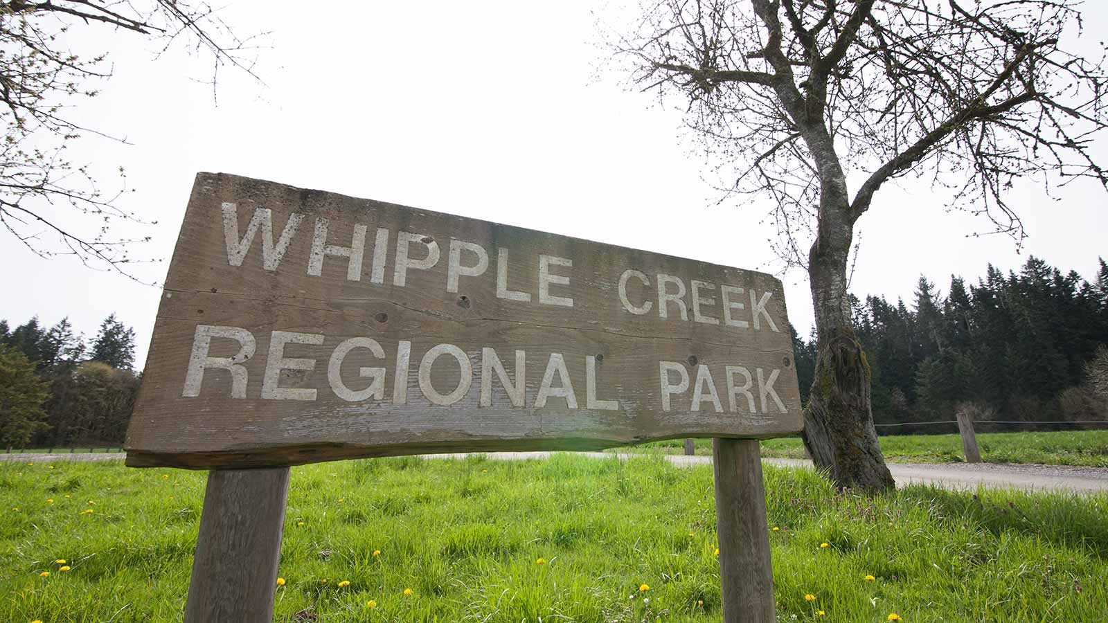 "A wooden sign that says ""Whipple Creek Regional Park"""
