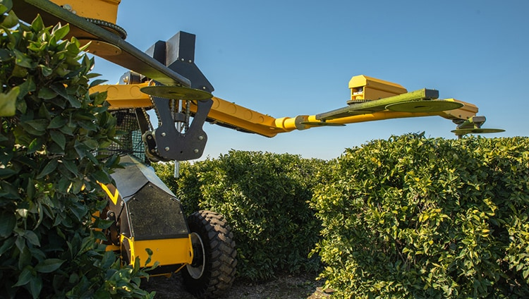 Self-Propelled Pruning Machine Powered by Tier 4 Engine in Orchard