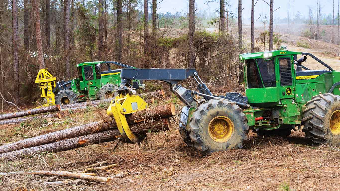A skidder and feller buncher performing full-tree logging in a forest