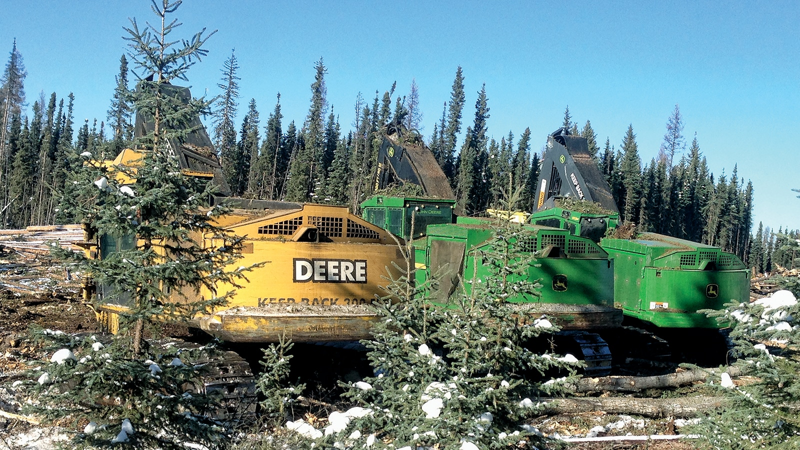 The backs of a John Deere 953G, 953K, and 953M Feller Bunchers lined up in the woods