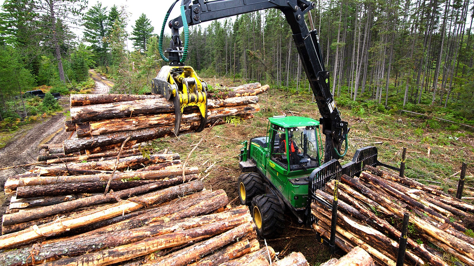 A forestry forwarder loads a grapple-full of wood from a pile onto the log bed of the machine.