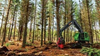 John Deere incorpore le système TimberRite H-16