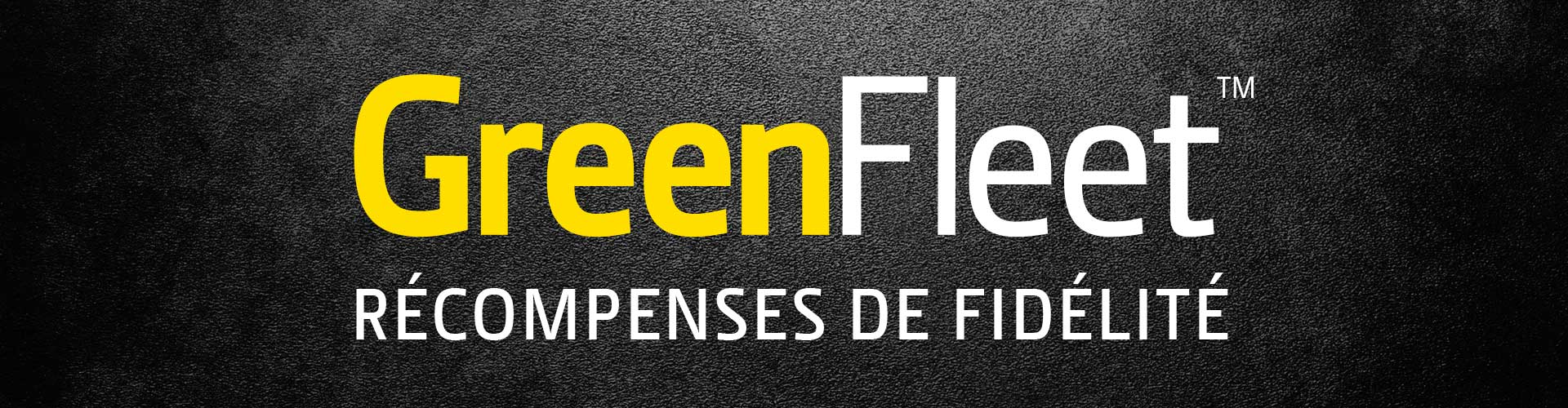 Logo Green fleet