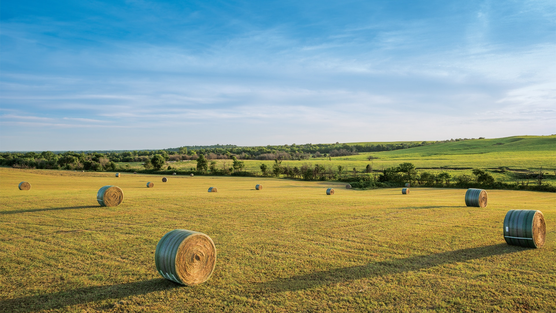 Photo of bales across farmland