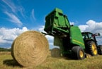 Follow the link to the Hay & Forage page