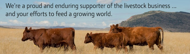 We're a proud and enduring supporter of the livestock business … and your efforts to feed a growing world.