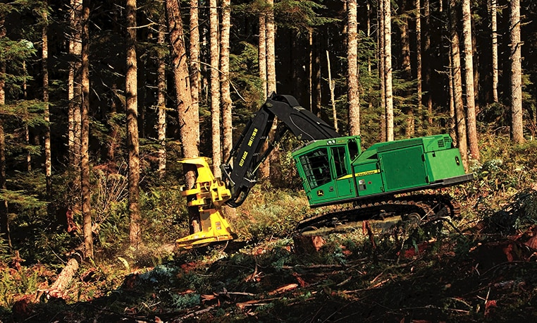 A feller buncher removing trees on the job site